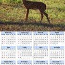 2014 calendar toolbox magnet refrigerator magnet Deer #3