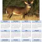 2014 calendar toolbox magnet refrigerator magnet Deer #4