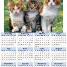 2014 calendar toolbox magnet refrigerator magnet Cats #4