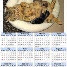 2014 calendar toolbox magnet refrigerator magnet Cats #6