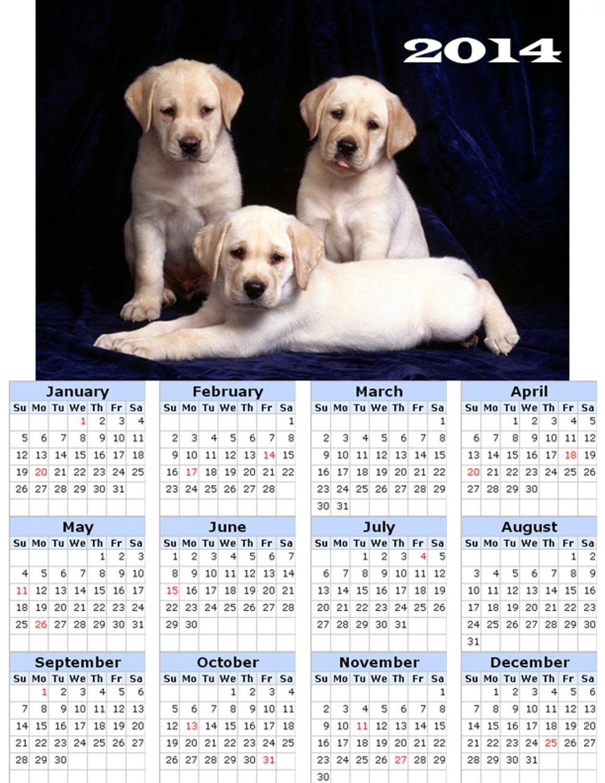 2014 calendar toolbox magnet refrigerator magnet Dogs #4