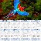 2014 calendar toolbox magnet refrigerator magnet Birds #2