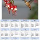 2014 calendar toolbox magnet refrigerator magnet Birds #5