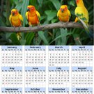 2014 calendar toolbox magnet refrigerator magnet Birds #7