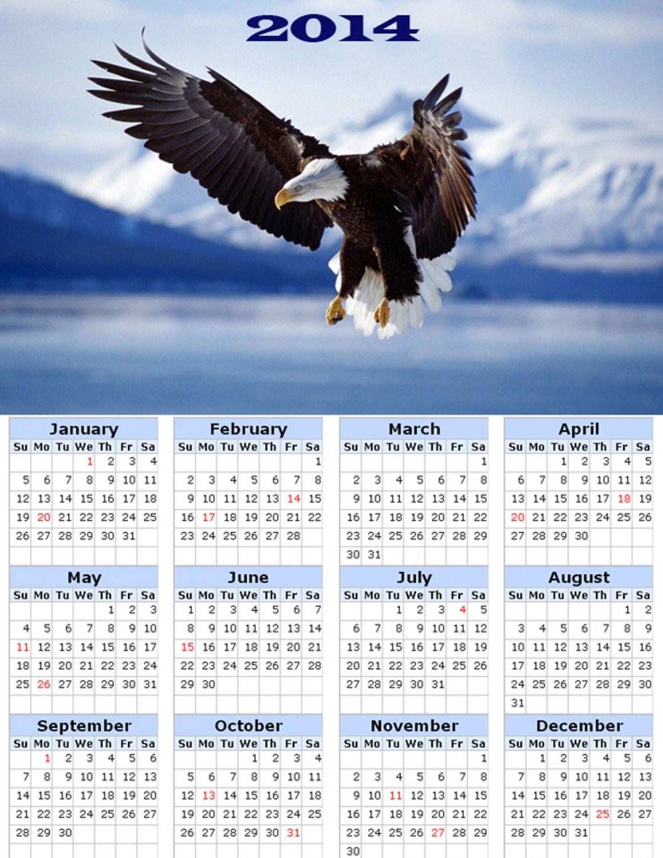 2014 calendar toolbox magnet refrigerator magnet Birds #8