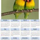 2014 calendar toolbox magnet refrigerator magnet Birds #9