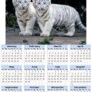 2014 calendar toolbox magnet refrigerator magnet BIG Cats #1