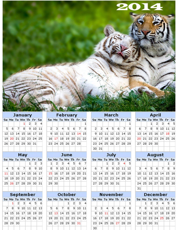 2014 calendar toolbox magnet refrigerator magnet BIG Cats #2