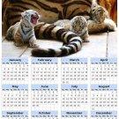 2014 calendar toolbox magnet refrigerator magnet BIG Cats #3