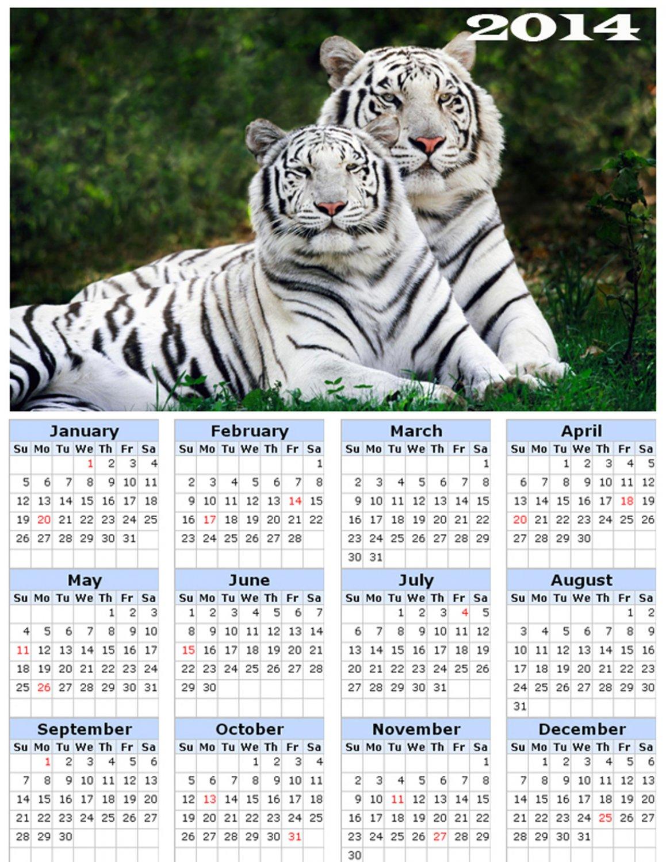 2014 calendar toolbox magnet refrigerator magnet BIG Cats #5