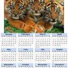 2014 calendar toolbox magnet refrigerator magnet BIG Cats #7