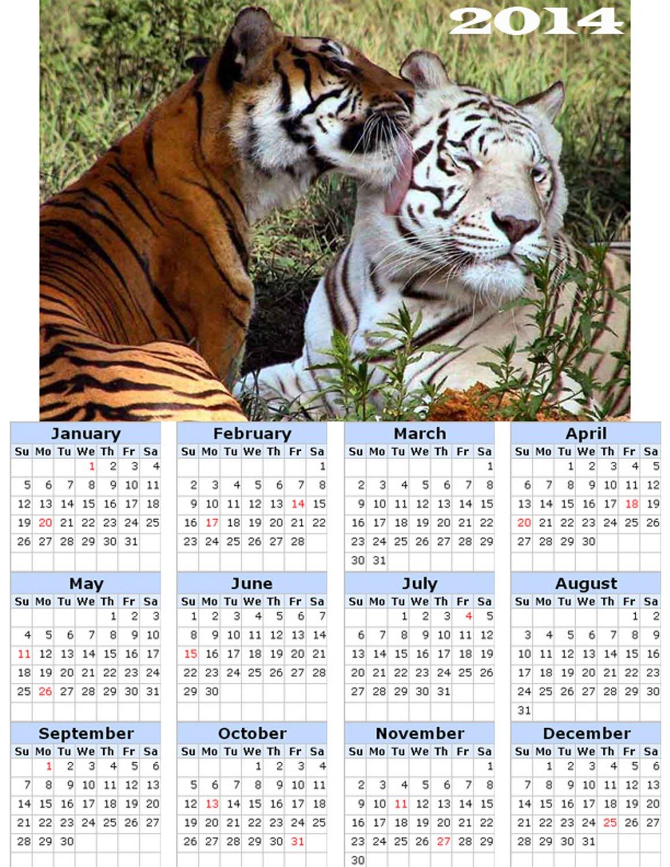 2014 calendar toolbox magnet refrigerator magnet BIG Cats #9