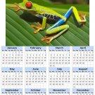 2014 calendar toolbox magnet refrigerator magnet Frogs #2