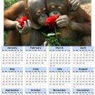 2014 calendar toolbox magnet refrigerator magnet Primates #1