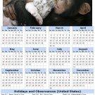 2014 calendar toolbox magnet refrigerator magnet Primates #5