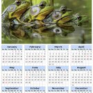 2014 calendar toolbox magnet refrigerator magnet Frogs #5