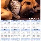 2014 calendar toolbox magnet refrigerator magnet Dogs #11