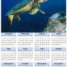 2014 calendar toolbox magnet refrigerator magnet Ocean Life #2
