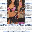 2014 calendar toolbox magnet refrigerator magnet Sexy Girls #37