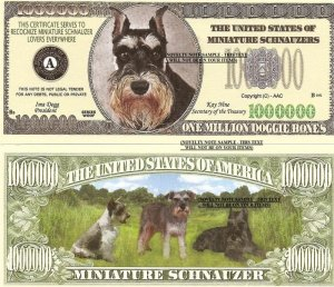MINIATURE SCHNAUZERS DOG PUPPY MILLION DOLLAR BILLS x 4