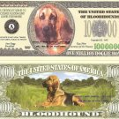 BLOODHOUND DOG ONE MILLION DOLLAR BILLS x 4 NEW GIFT