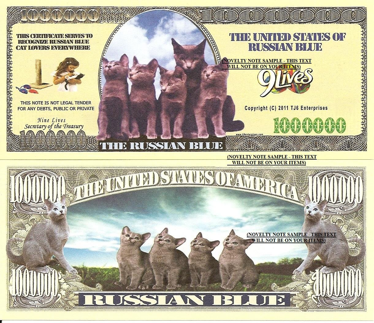 RUSSIAN BLUE CAT KITTENS MILLION DOLLAR BILLS x 4 NEW