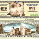 PERSIAN CAT KITTENS MILLION DOLLAR BILLS x 4 NEW
