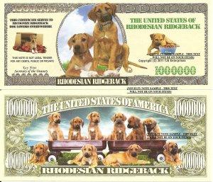 RHODESIAN RIDGEBACK DOG PUPPY MILLION DOLLAR BILLS x 4