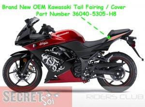 Kawasaki Ninja 250R 36040-5350-H8 OEM Left Tail Fairing Special Edition SE 08 09 10 11