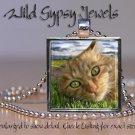 "Orange Tabby Cat KITTEN green Eyes lounging 1"" Glass Tile Metal Pendant Necklace"