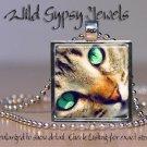 "Cat sweet cute tabby KITTEN Green Eyes chic 1"" Glass Tile Metal Pendant Necklace"