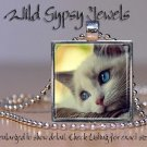 "White Cat Kitten Blue eyes sweet cute chic 1"" glass tile metal pendant necklac"