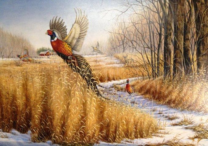 Pheasant Wildlife Cross Stitch Pattern***L@@K***