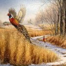 Pheasant Wildlife Cross Stitch Pattern***L@@K***