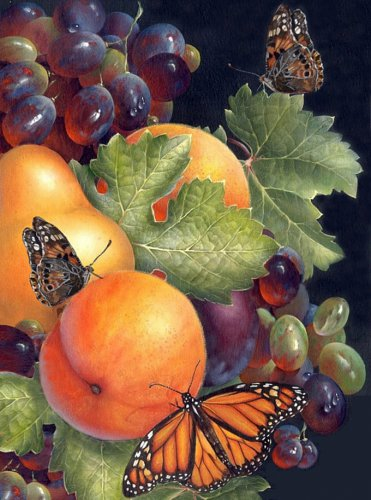 Butterflies and Fruit Cross Stitch Pattern***L@@K***