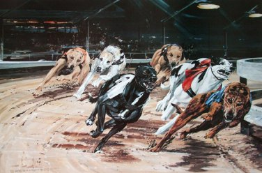 Racing Home Cross Stitch Pattern***L@@K***