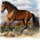 American Quarter Horse Cross Stitch Pattern***L@@K***
