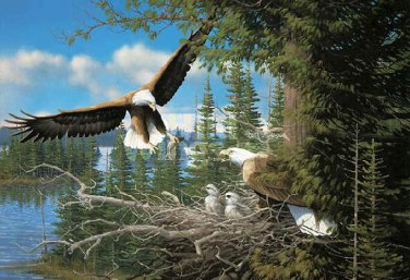 Spring Bald Eagles Cross Stitch Pattern***L@@K***