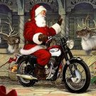 MotorCycle Santa Visits The Reindeer***L@@K***