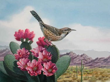 Bird Cactus Wren Cross Stitch Pattern***L@@K***