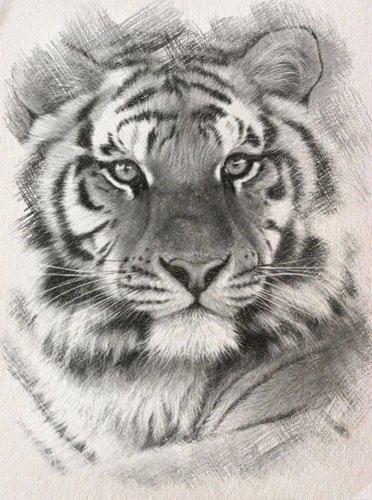 B & W Siberian Tiger Cross Stitch Pattern***LOOK***