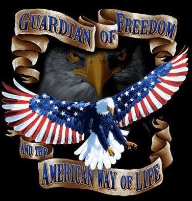 American Way Of Life Cross Stitch Pattern***L@@K***