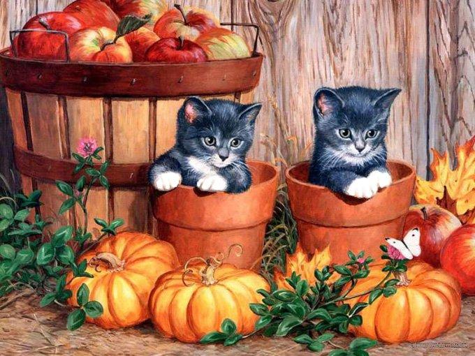 Cute Fall Kitten Pair Cross Stitch Pattern***L@@K***