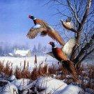 Pheasents In Flight Cross Stitch Pattern***LOOK***