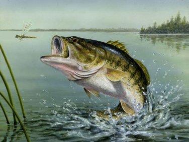 Large Mouth Bass Cross Stitch Pattern***LOOK***