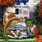 Notre Dame Irish Home Field Cross Stitch Pattern***LOOK***