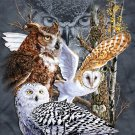 Owls Of The World Cross Stitch Pattern***LOOK***X***DOWNLOAD***