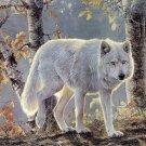 Autum White Wolf Cross Stitch Pattern***LOOK***