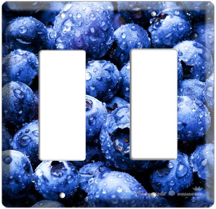 YAMMIE BLUEBERRY KITCHEN DECOR COVER PLATE DECORA ROCKER DOUBLE LIGHT WALL SWITCH PLATE