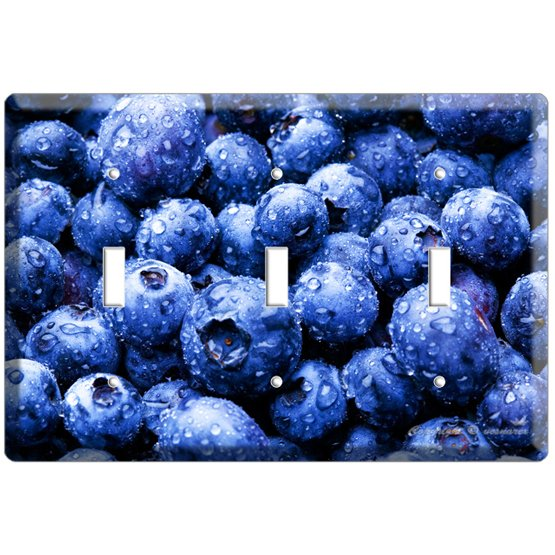YAMMIE BLUEBERRY KITCHEN DECOR COVER TRIPLE LIGHT WALL SWITCH PLATE